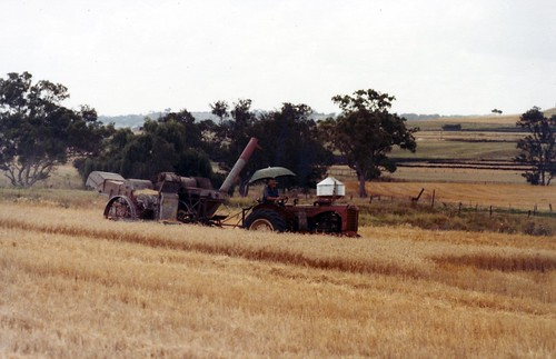 farming queensland goomburra