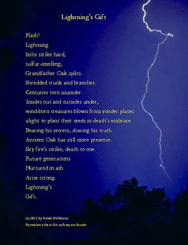 Inspirational Poems about Life: Lightning's Gift | by The Story Lady
