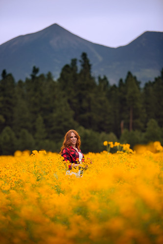 flagstaff canon girl woman flowers wildflowers ginger redhead redhair mountains coconino northernarizona yellow orange nature pretty beauty beautiful sunset goldenhour backlight arizona summer flower field meadow people outdoors plaid bokeh dslr stephaniegreer canonef70200mmf28lisii color colorful coreopsis naturallight portrait peaks sanfranciscopeaks mthumphries depthoffield warm warmth pose sunflowers 5dmarkiii f28