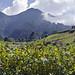 Paesaggio alla fine del sentiero di Los Quetzales nei pressi di Cerro Punta