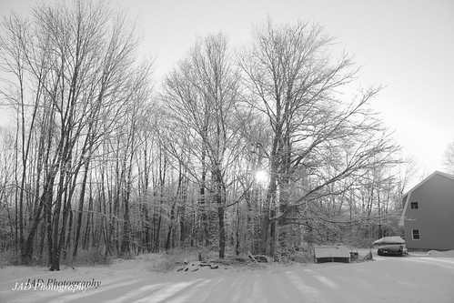 morning snow infrared