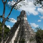 Guatemala, Ruinas de Tikal 36