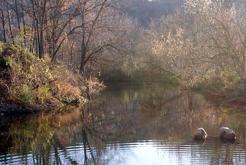 white nature river landscape arkansas