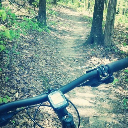 giant square trail squareformat walden mountainbiking anthem garmin georiga singletrack douglasville garmin200 iphoneography instagramapp uploaded:by=instagram