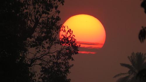 sunset birds punjab bahawalpur noormahal mirjee ڈوبتےسورجسےکہہدو sunsetatnoormahalbahawalpur pakistancanonsx50