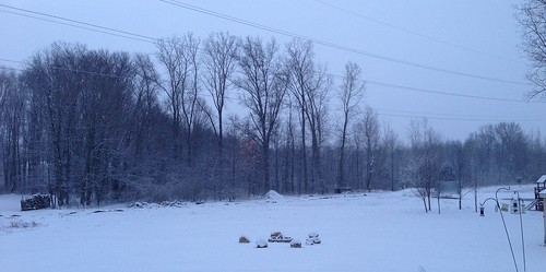 Beautiful winter wonderland in my backyard this morning. | by wantmoore