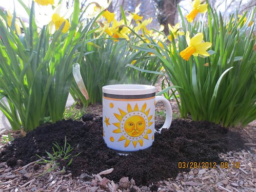 Reusing coffee grounds | by Montgomery Cty Division of Solid Waste Services