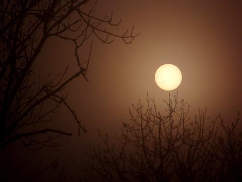 sky sun fog sunrise soleil brouillard brume leverdesoleil
