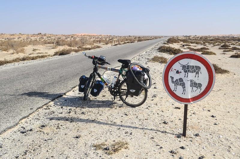Day150-Bike-130402