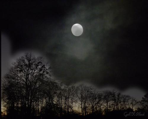 trees light sky moon clouds photoshop landscape woods soe thegalaxy flickraward theperfectphotographer thebestofday ringexcellence flickrstruereflection1 rememberthatmomentlevel1 rememberthatmomentl1