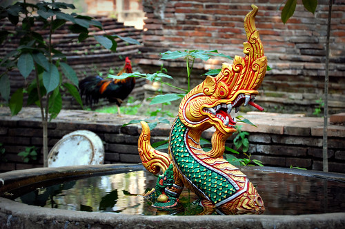 dragon pond | by MHollandDrive