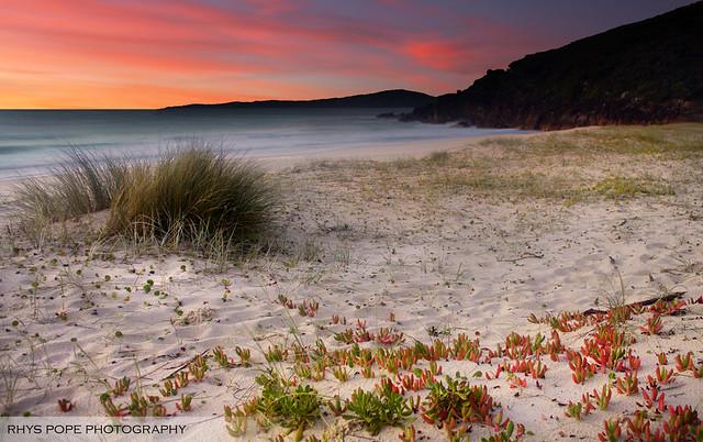Zenith Beach Sunrise    SHOAL BAY