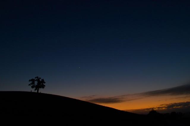 Taminick Sunrise