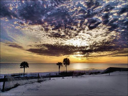 sunset gulfofmexico nature sand florida palmtrees pointandshoot panamacitybeach saltwater autofocus me2youphotographylevel1 nikons01