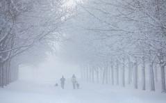 Uppsala, December 9, 2012