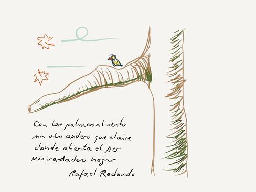Con las palmas al viento | by albertoprieto