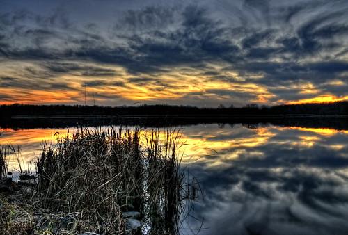 nature water lakes sunsets cattails grasses hss cookcountyforestpreserve tonemapping tonemap nikkor18300mm sliderssunday busseforestnaturepreserve