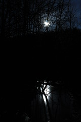 To the Moonlit River