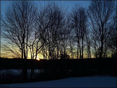 trees winter sunset sky sun snow cold nature wintersunset dusk snowy bluesky rhodeisland eveningsky wintersky stumppond winterscenery februarysky smithfieldrhodeisland