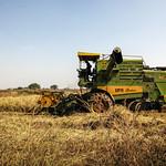 37056-013: Chhattisgarh Irrigation Development Project in India