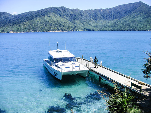 Motuara Island,Queen Charlotte Sound | by sussexbirder