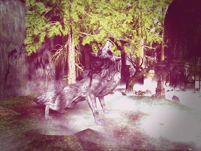 Midnight Dreams  - Howling Wolf Seerenade