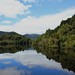 Down the Gordon River (1)