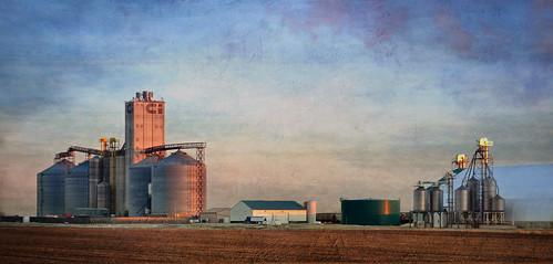 Ag Partners, Hartley, Iowa   by TumblingRun