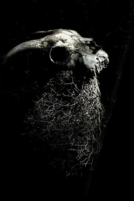 Death #1