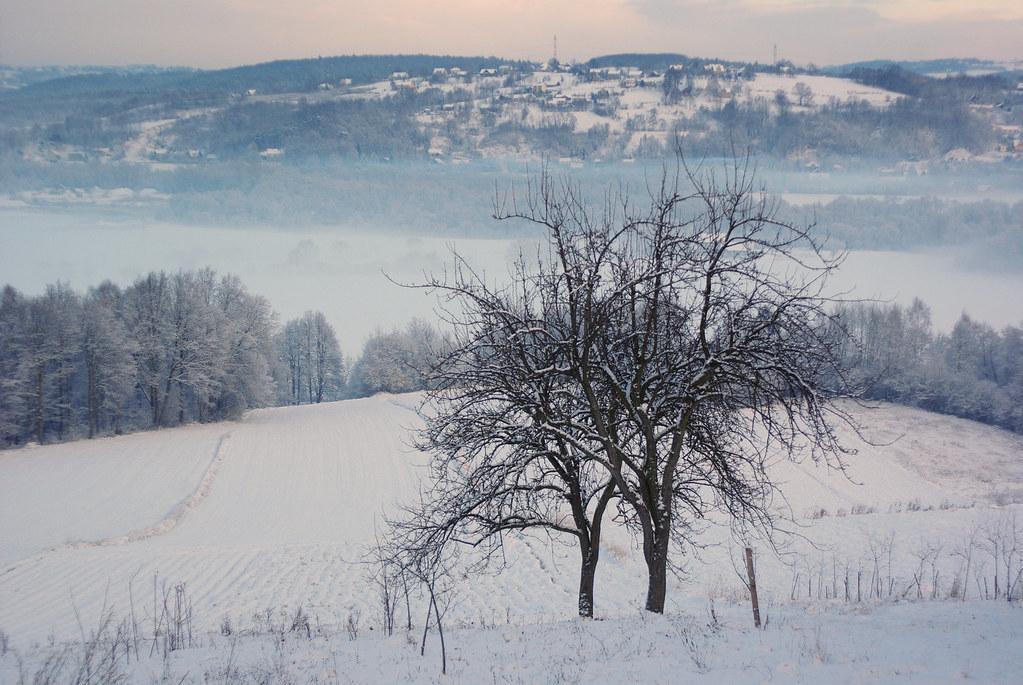340/366: Mist in Raba valley