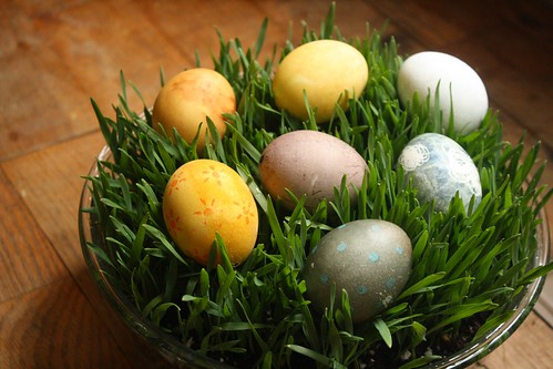 naturally dyed eggs | by by hand at home