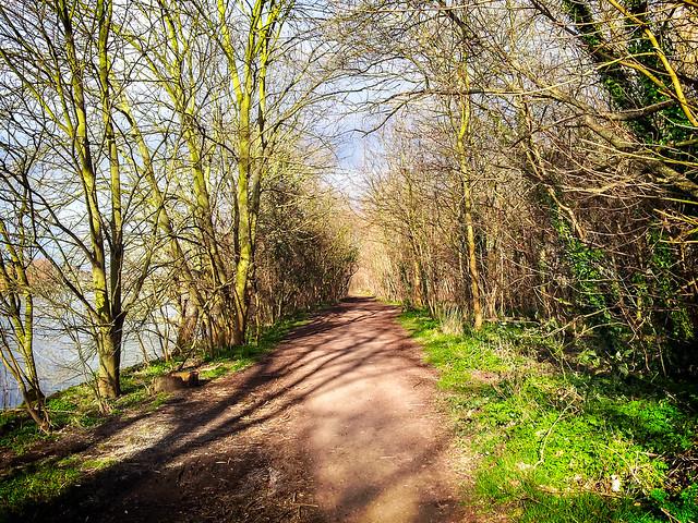 Thames Path 14/03/13 - 12