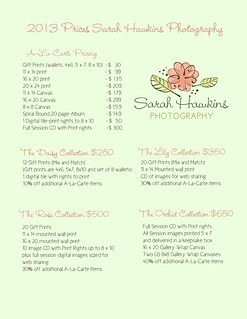 2013 pricing sheet   by hawklady1