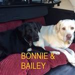 Bonnie & Bailey