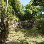 Guatemala, Ruinas de Tikal 17