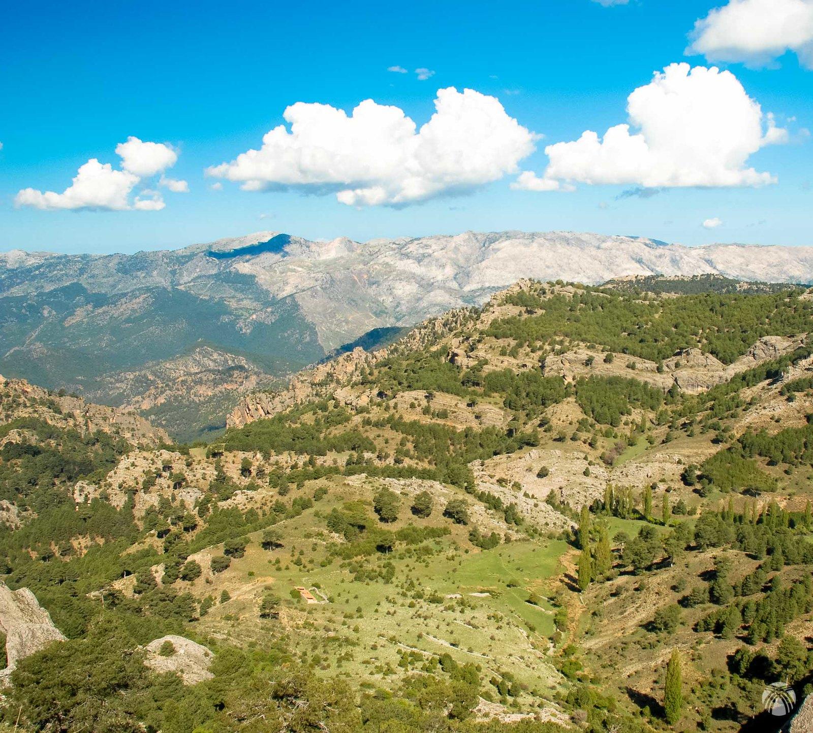 Vistas hacia la Hoya de la Albardía