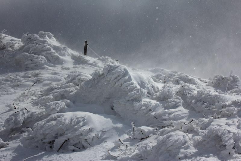 伊吹山 雪山登山
