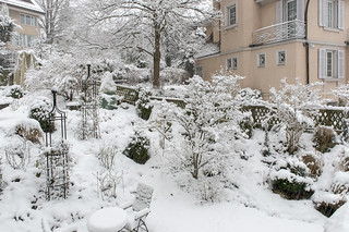 Our garden dressed up in winter clothes