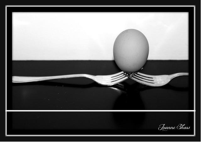 IMG_6662 Egg Cradle