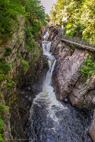 smack53 adirondacks newyork trees water stream river summer summertime nikon d3100 nikond3100