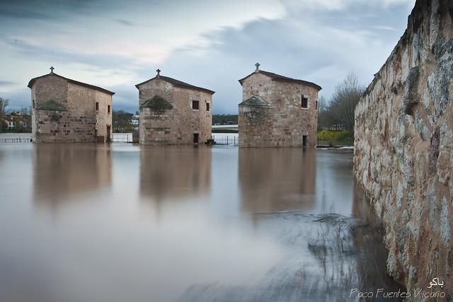 Aceñas de Olivares inundadas