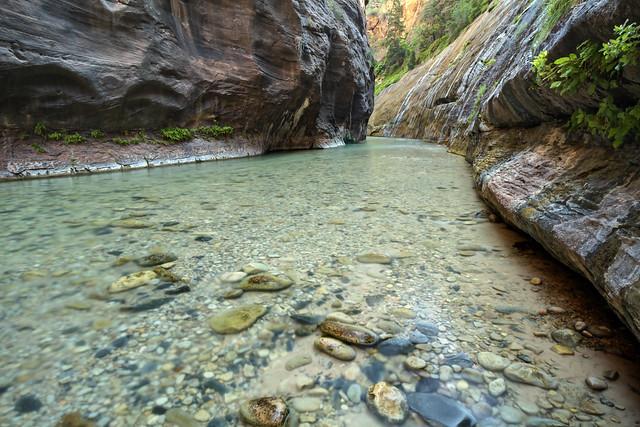The Narrows, North Fork Virgin River, Zion National Park, Washington County, Utah 17