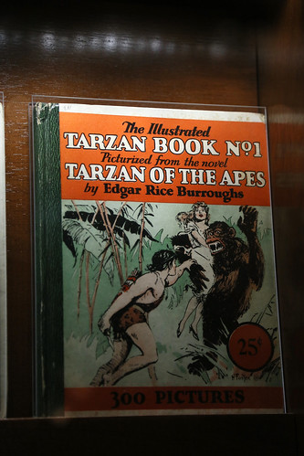 """The Illustrated Tarzan Book No. 1 Pictured from the Novel """"Tarzan of the Apes"""" by Edgar Rice Burroughs"""