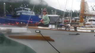 Ginger stripping varnish | by Sailing P & G