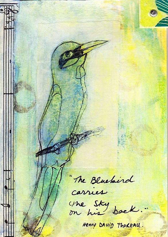 Blue Bird Mail Art Micron Pen Bird Drawing Music Sheet P