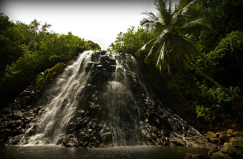 travel tree green water pool rock canon waterfall rocks foliage palmtrees micronesia waterscape oceania pohnpei travelphotography canonphotography federatedstatesofmicronesia kepirohiwaterfall kepirohi canon7d aprilmoulton