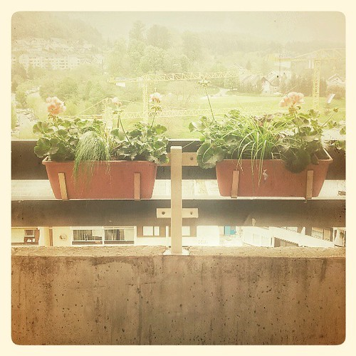 flowers square view balcony squareformat normal velenje iphoneography instagramapp uploaded:by=instagram foursquare:venue=4fff1dfee4b0671608f529e7