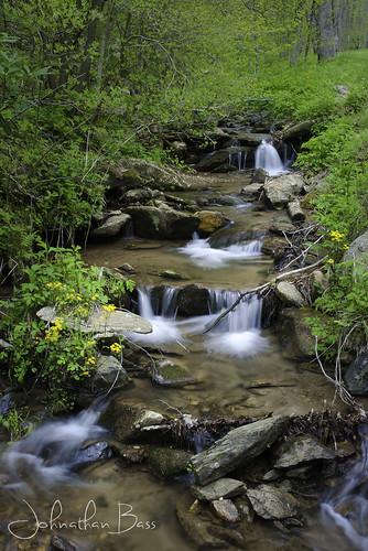 flowers trees green fall water grass yellow creek flow waterfall nikon stream long exposure bass johnathan greenery flowing liquid goldfield goldfields d80