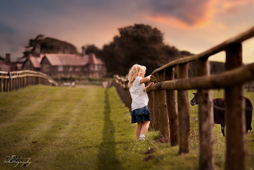 southwales south wales beautifulwales margam country park landscape child childhood fairytales girl portrait farm sheep sunset goldenhour ngc nikon d5200 mkphotography margaritakphotography brilliant