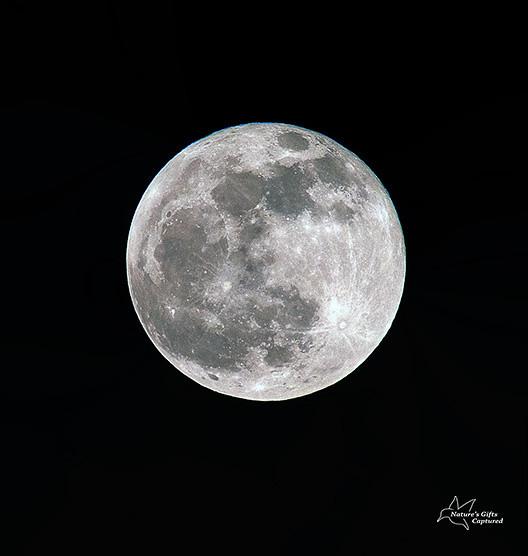 Full Moon 4.2013